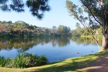 Pretoria country club dam in Waterkloof, central Pretoria, Tshwane, Gauteng